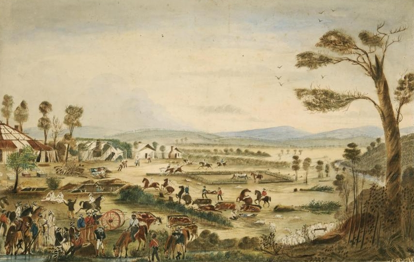 relationship between aboriginal and european settlers images
